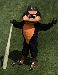 baltimore orioles bird mascot